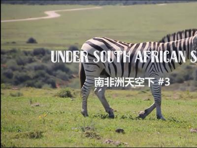 【WHATSUP WKND】#227在南非洲的天空下3