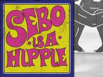 嬉皮士滑手Sebo Walker在Berrics板场的小片段