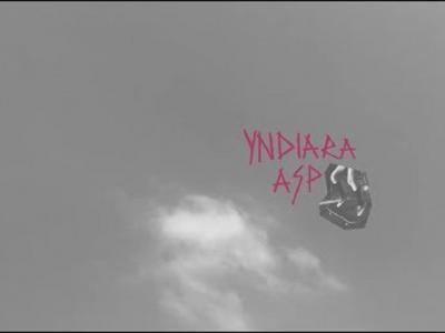 Vans推出:记录巴西女将Yndiara Asp个人滑板历程影片:「Imo」