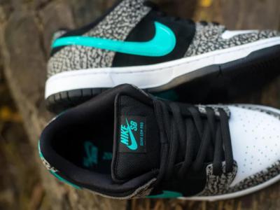 【NEWYE周三】——耐克爆裂象纹 Nike SB Dunk Low PRO Elephant